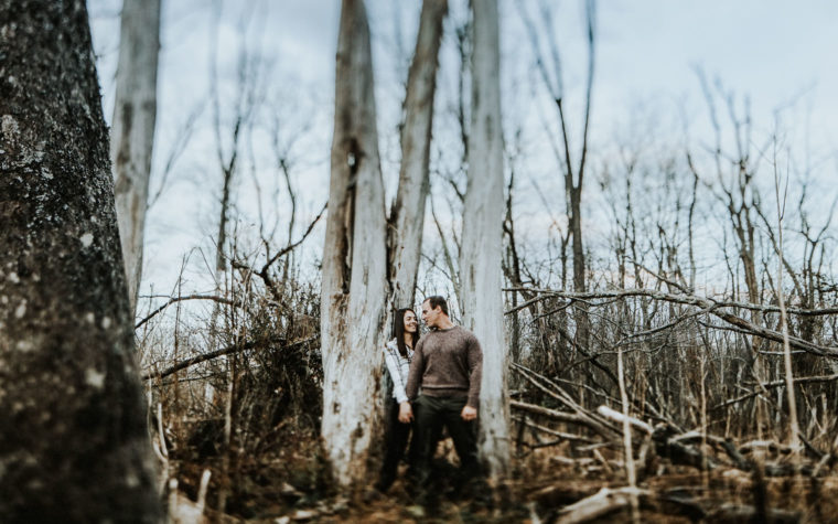twisted-oaks-studio-brenna-frank-blog-0400