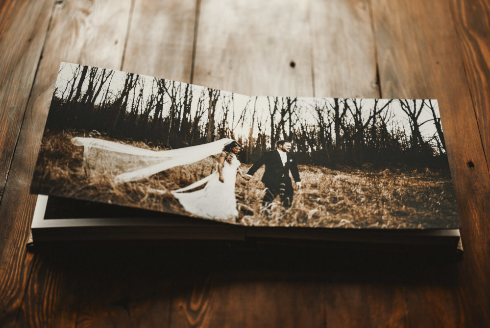 Vision Art Wedding Album
