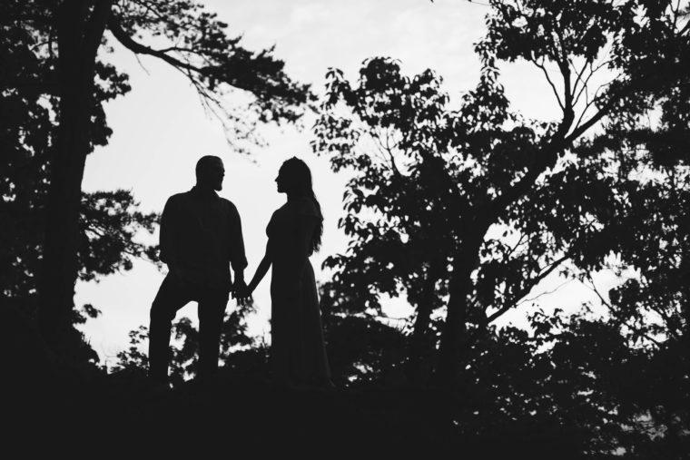 Pinnacle Overlook Engagement